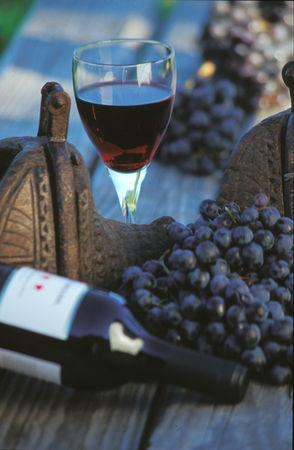 20110508010101-ruta-del-vino-006.jpg